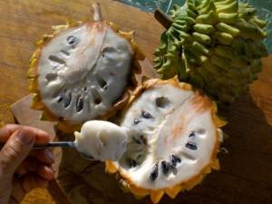 20 εξωτικά φρούτα που μάλλον δεν έχετε ξανακούσει!