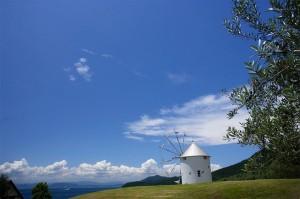 """Το """"νησί της ελιάς"""" στην Ιαπωνία θυμίζει έντονα... Ελλάδα!"""