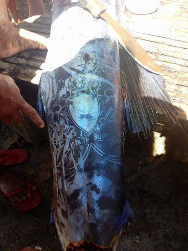perierga.gr - Παράξενο ψάρι με... τατουάζ!
