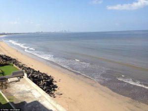 Μετέτρεψε μια παραλία από χωματερή σε καθαρή ακτή!