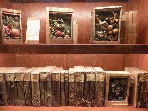 Xylotheque: Η βιβλιοθήκη των ξύλων!