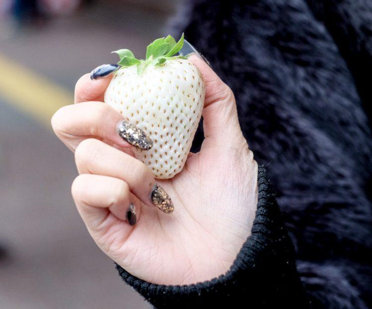 perierga.gr - Αυτές οι σπάνιες άσπρες φράουλες αξίζουν το βάρος τους... σε χρυσάφι!