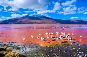Παράξενες λίμνες στον κόσμο!