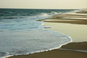 Νησί εμφανίστηκε στις ακτές της Βόρειας Καρολίνας!