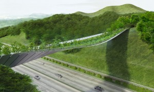Πράσινη γέφυρα προστατεύει την άγρια ζωή και το περιβάλλον!