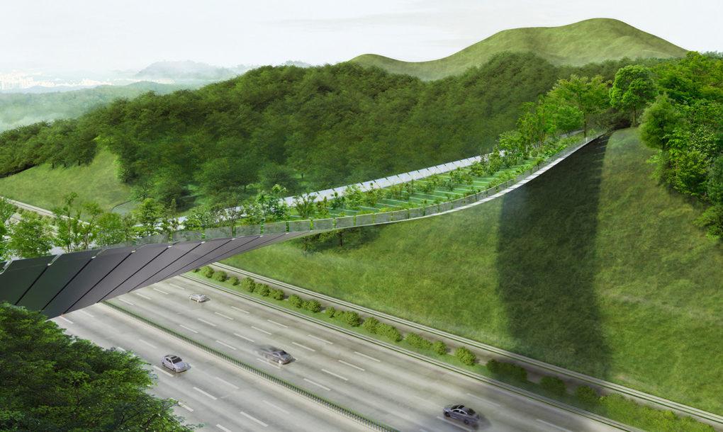 perierga.GR - Πράσινη γέφυρα προστατεύει την άγρια ζωή και το περιβάλλον!