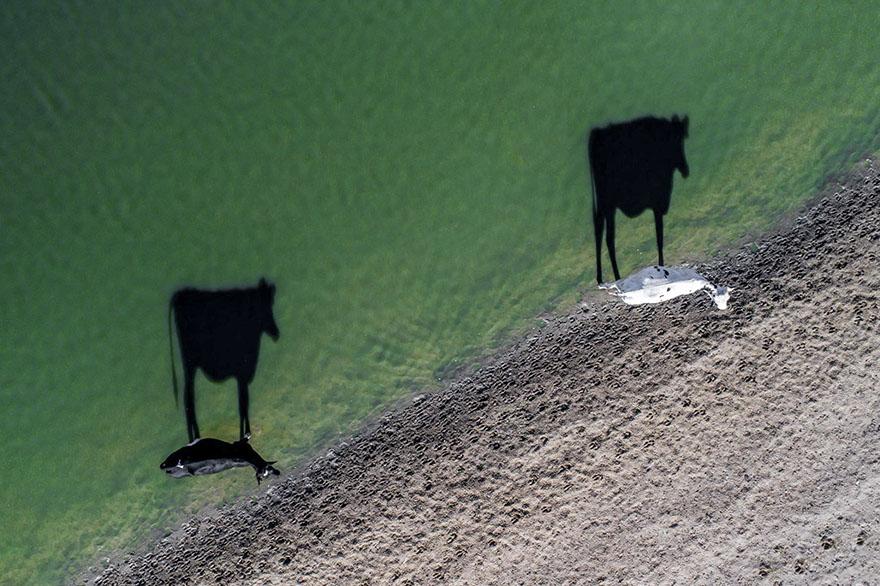 perierga.gr - Οι καλύτερες αεροφωτογραφίες της χρονιάς