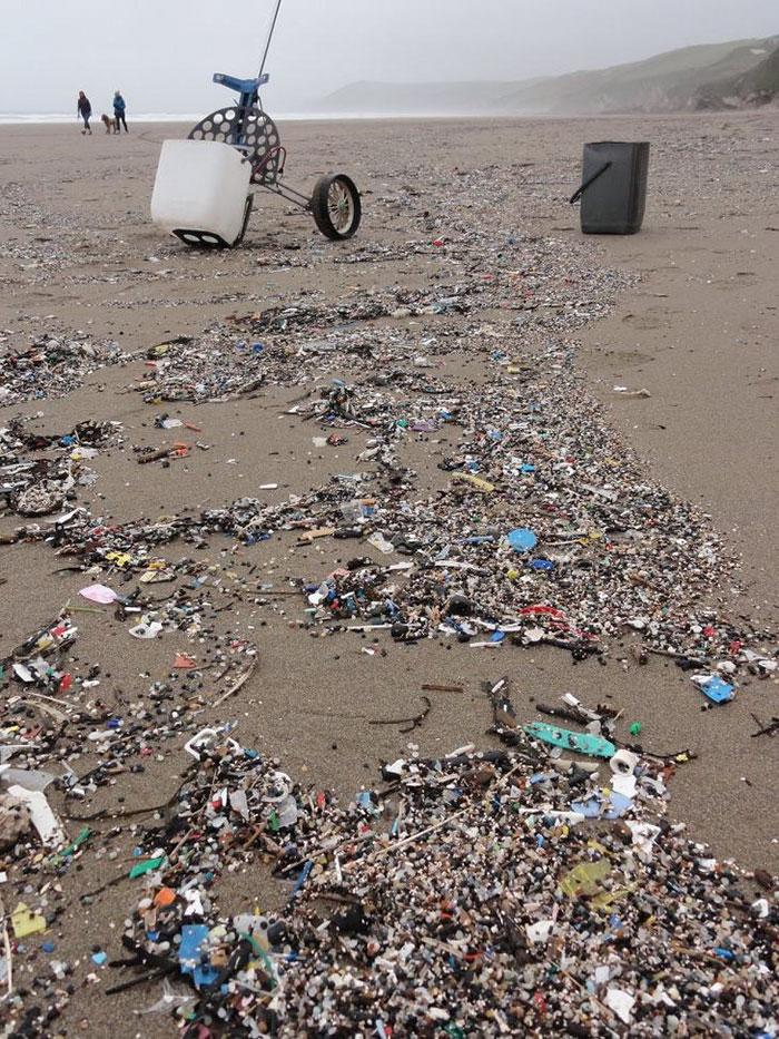 perierga.gr - Τι περιέχουν 35 τσάντες πλαστικών από την παραλία;