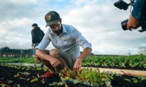 Σουπερμάρκετ παράγει τα δικά του λαχανικά στην ταράτσα!