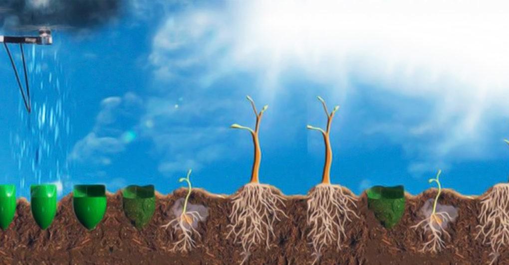 perierga.gr - Drones φυτεύουν ολόκληρο δάσος!