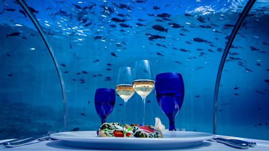 perierga.gr - Εντυπωσιακό εστιατόριο μέσα σε... ενυδρείο!