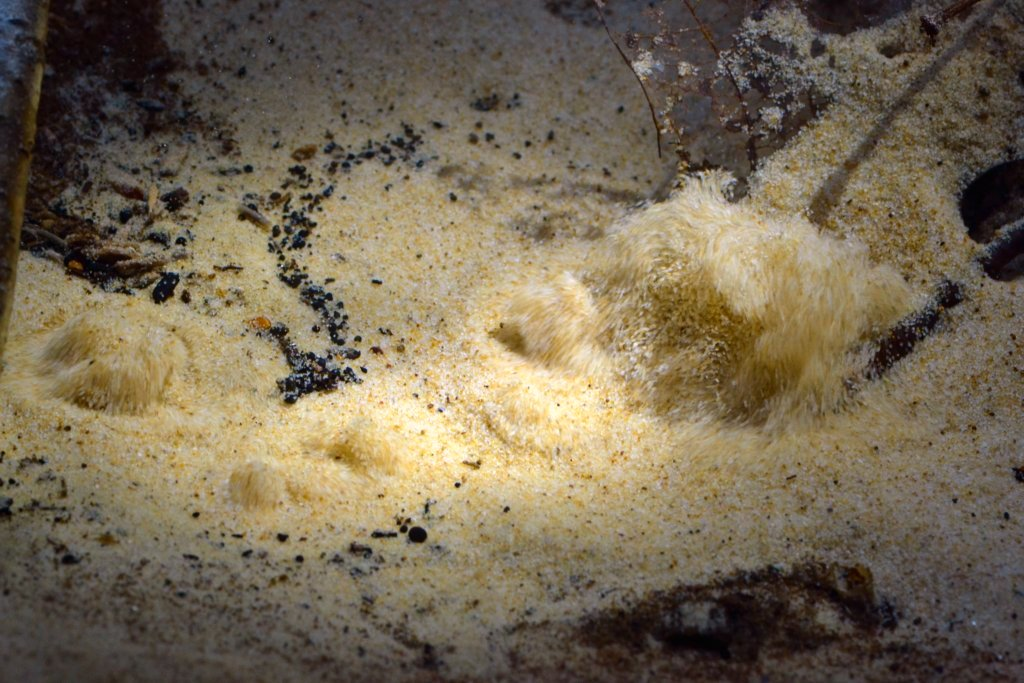 "perierga.gr - Άμμος που ""βράζει"" σαν το νερό!"