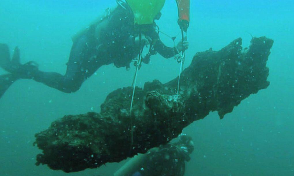 perierga.gr - Υποβρύχιο δάσος ανακαλύφθηκε στον Κόλπο του Μεξικού!
