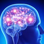 Τι κοινό έχουν ο ανθρώπινος εγκέφαλος, το διαδίκτυο και το σύμπαν;