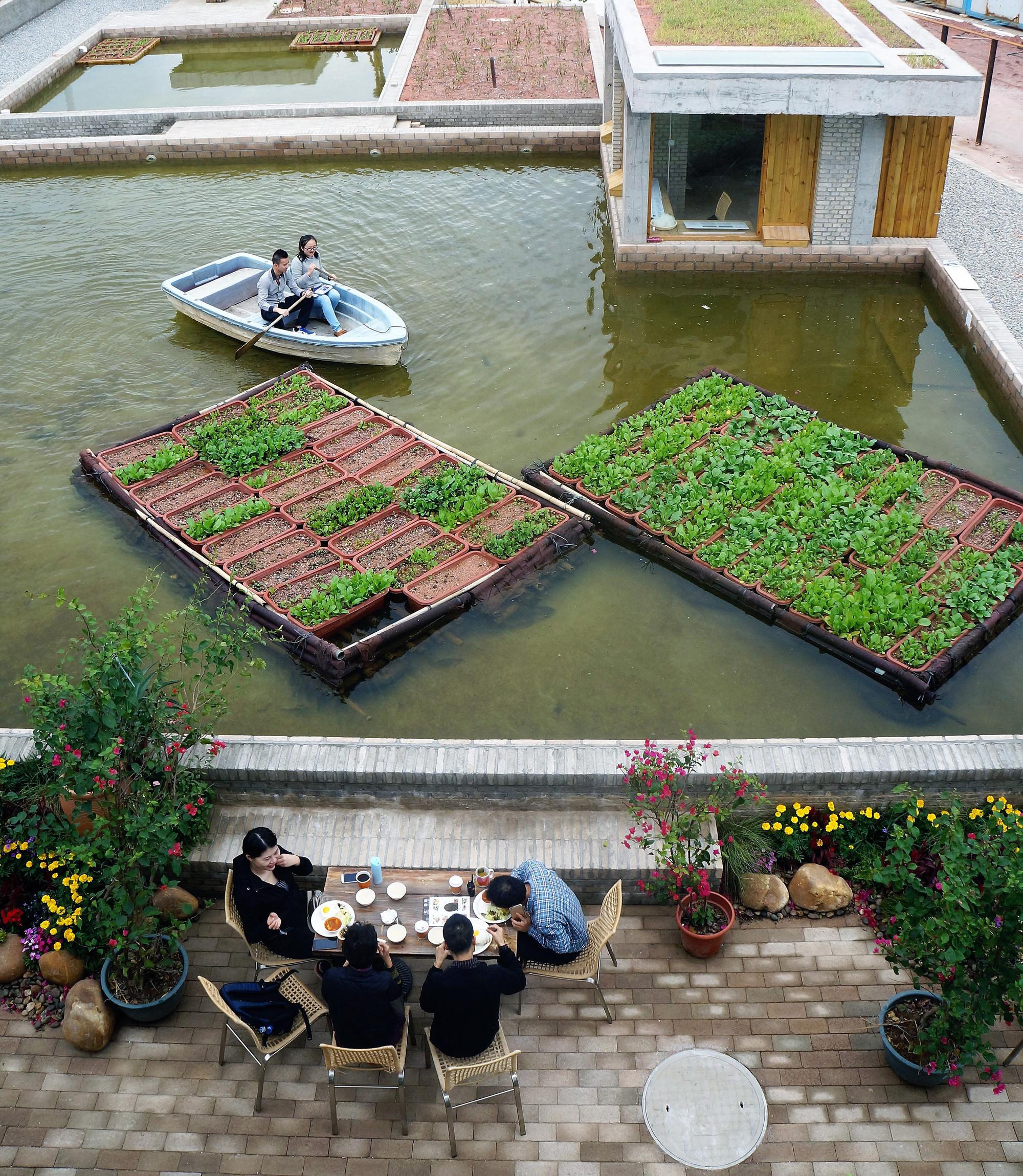 "perierga.gr - ""Πλωτοί κήποι"" σε εγκαταλειμμένο κινεζικό εργοστάσιο!"