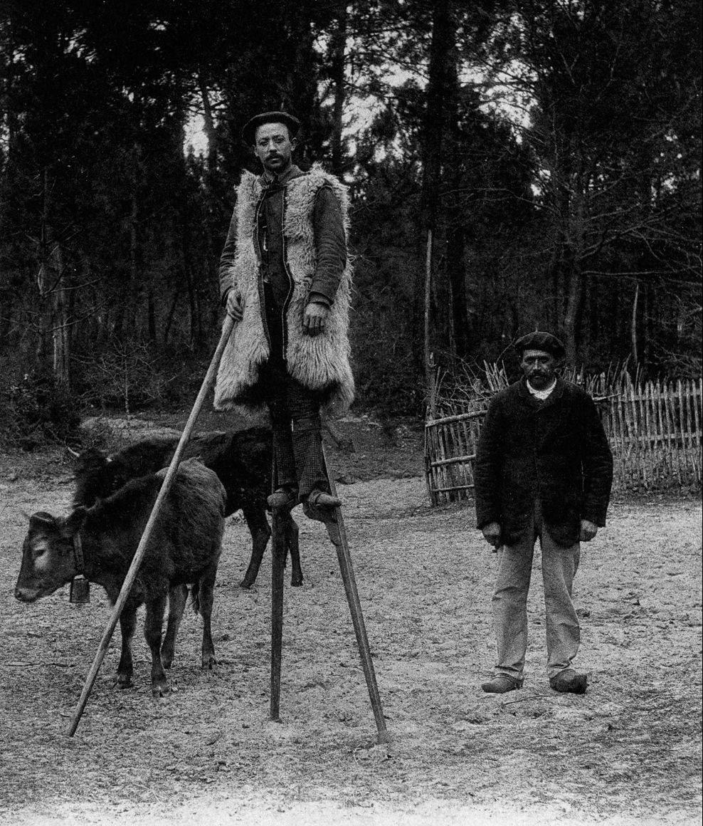perierga.gr - Οι βοσκοί της Γαλλίας του 19ου αι. περπατούσαν με ξυλοπόδαρα!
