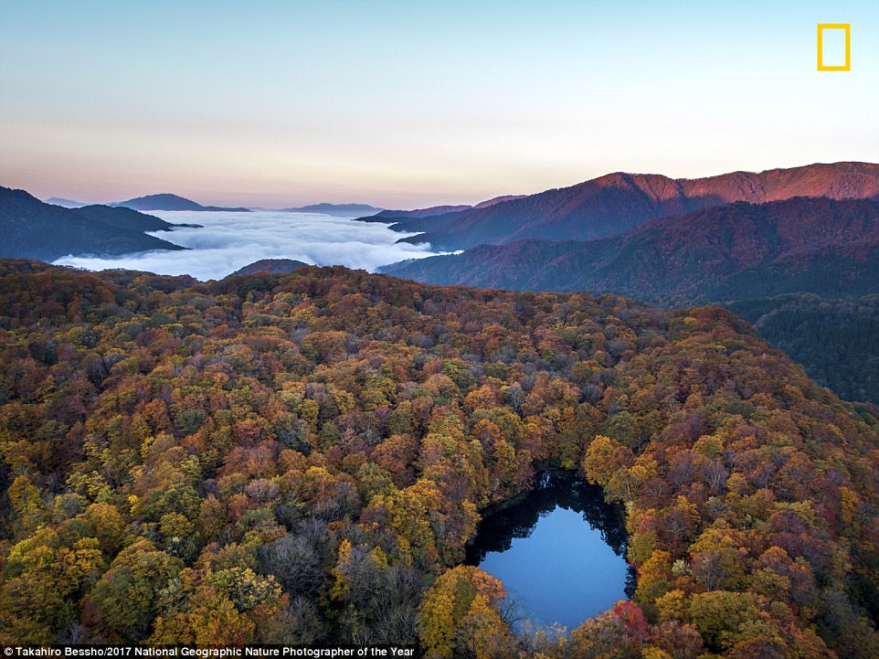 perierga.gr - Ο διαγωνισμός National Geographic 2017 εντυπωσιάζει με τις νέες συμμετοχές!