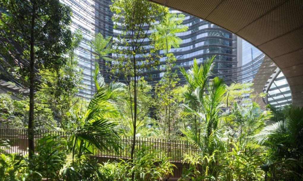 perierga.gr - Κήπος μεγαλώνει ανάμεσα από ουρανοξύστες!