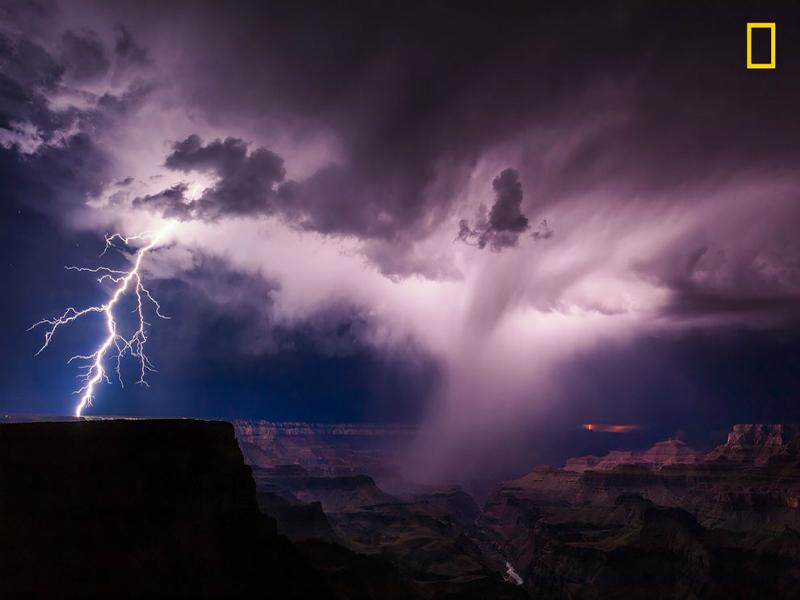 Perierga.gr - Οι νικήτριες φωτογραφίες της φύσης στο διαγωνισμό του National Geographic