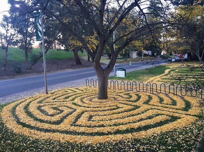 Perierga.gr - Όταν τα φύλλα που πέφτουν γίνονται τέχνη