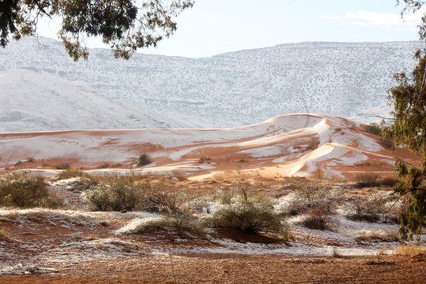 Perierga.gr - Χιόνι στη Σαχάρα για τρίτη φορά σε 40 χρόνια
