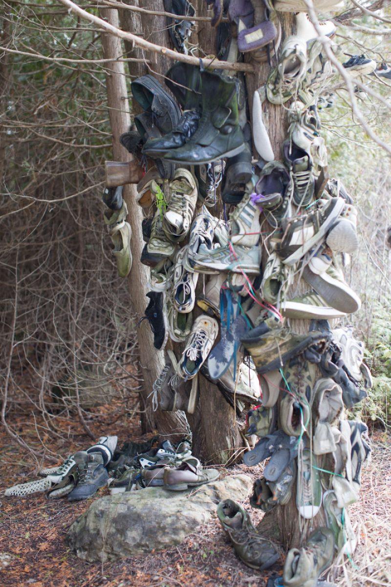 Perierga.gr - Ένα μυστηριώδες δάσος... από παπούτσια