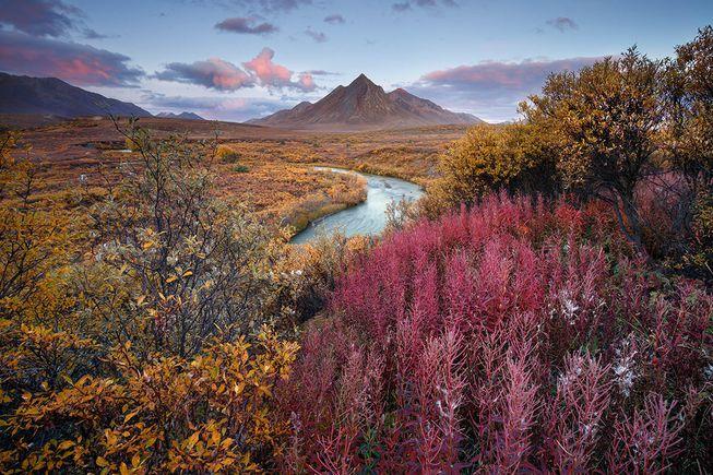 Perierga.gr - Παραμυθένιοι κήποι της φύσης που κέρδισαν σε διαγωνισμό φωτογραφίας