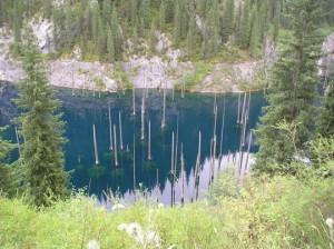 Τα βυθισμένα έλατα της λίμνης Kaindy