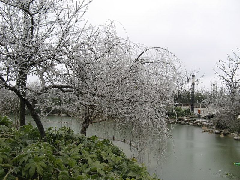 Perierga.gr - Η βροχή παγώνει