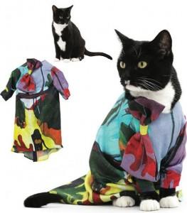 Εκπληκτικά κουστούμια για το γάτο σας!