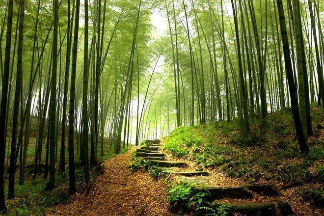 Perierga.gr - Η όμορφη πλευρά της Κίνας