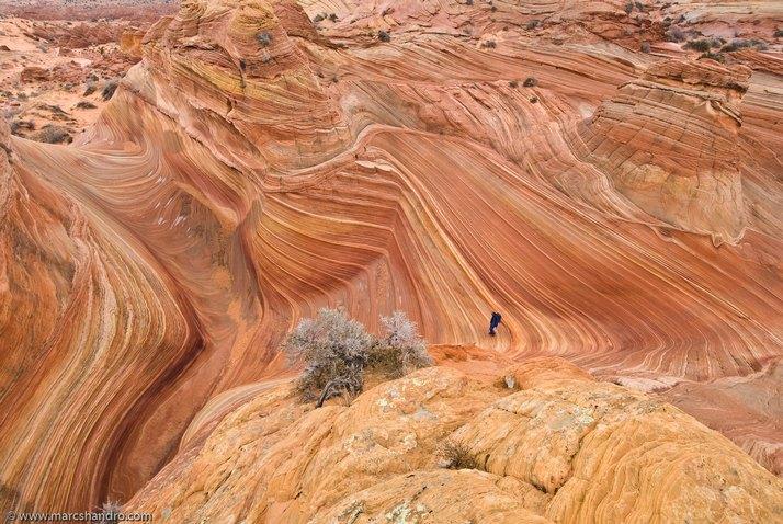 Perierga.gr - Arizona