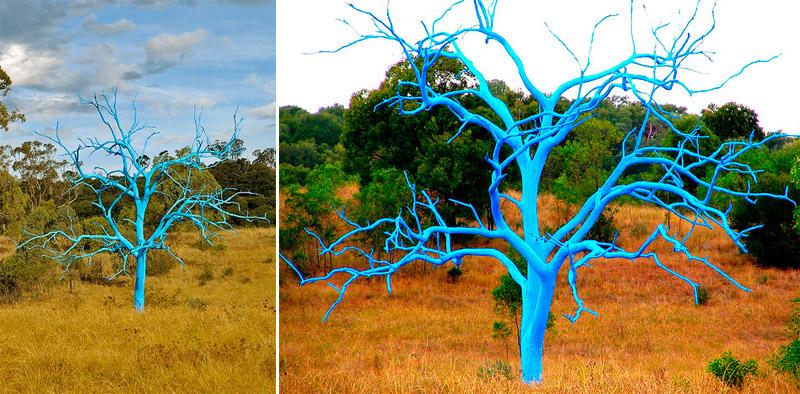 Perierga.gr - Πολύχρωμα δέντρα
