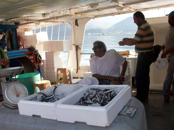 Perierga.gr - Ένας εμίρης αγοράζει ψάρια!