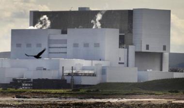 Perierga.gr - Πυρηνικοί αντιδραστήρες έκλεισαν από...μέδουσες!