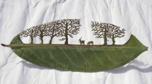 Σκαλίζοντας ...φύλλα δέντρων