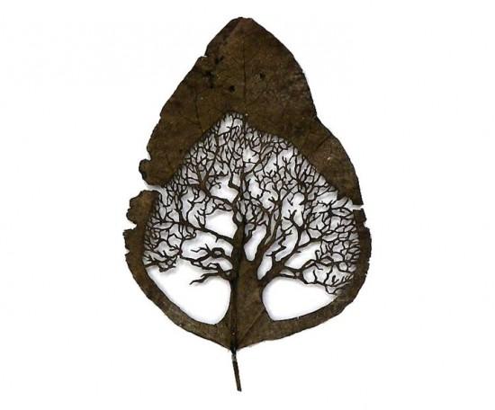 Perierga.gr - Σκαλισμένα φύλλα δέντρων