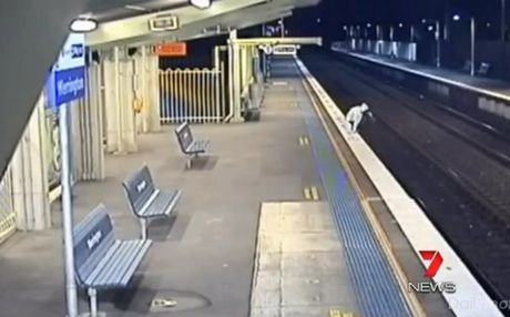 Perierga.gr - Επέζησε από χτύπημα τρένου!