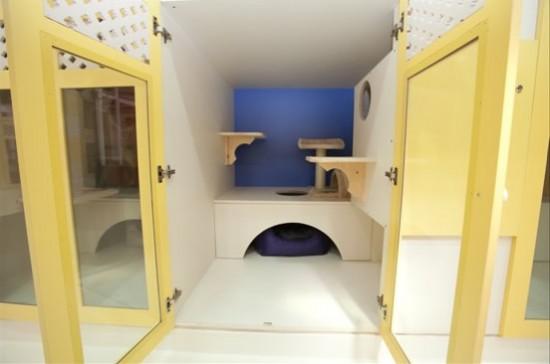 Perierga.gr - Ξενοδοχείο 5 αστέρων για κατοικίδια