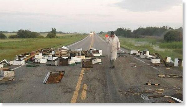 "perierga.gr - 20.000.000 μέλισσες ""έκλεισαν"" εθνικό δρόμο!"