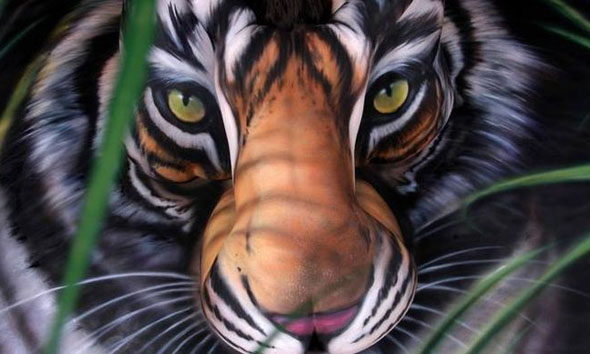 perierga.gr - Βλέπεις μία τίγρη; Για δες καλύτερα!