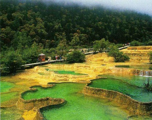 Perierga.gr - Εντυπωσιακές χρυσο-κίτρινες αναβαθμίδες