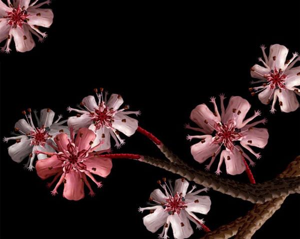 perierga.gr - Αν βλέπετε λουλούδια, δείτε καλύτερα...