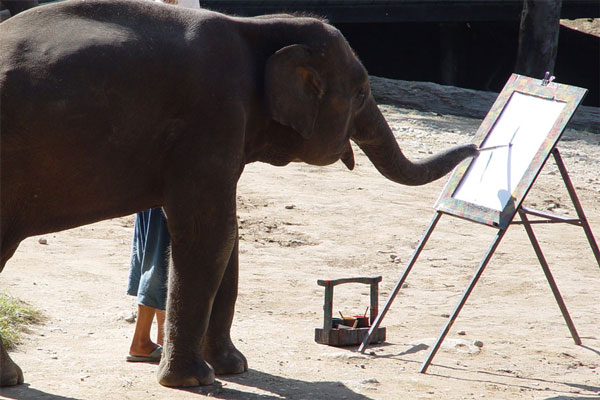 perierga.gr - Ένας ελέφαντας γίνεται απίστευτος... ζωγράφος!