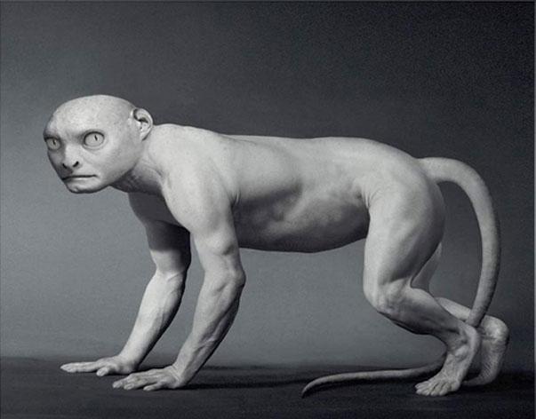 perierga.gr - Αν οάνθρωπος είχε δημιουργηθεί από ένα ψάρι...
