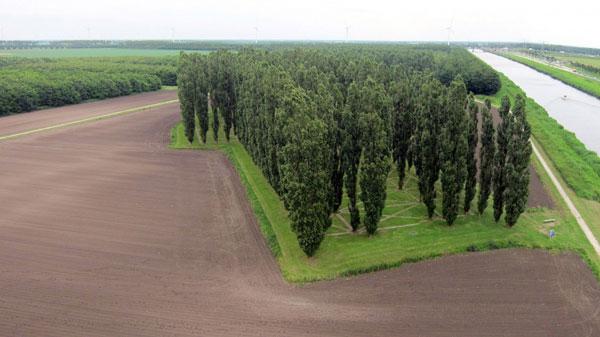 """perierga.gr - Η πιο """"πράσινη"""" εκκλησία στον κόσμο είναι φτιαγμένη από δέντρα!"""