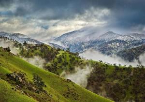 perierga.gr - Πώς ένας χρόνος στη φύση κυλάει μέσα σε 2 λεπτά;