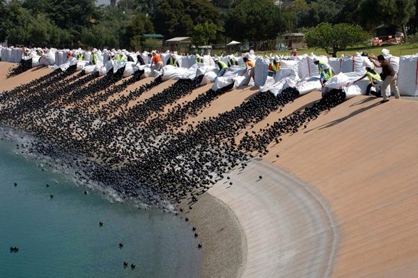 Perierga.gr - 400000 πλαστικά μπαλάκια