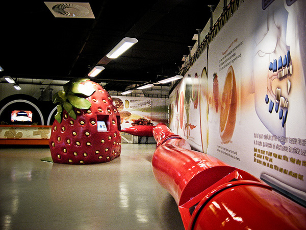 perierga.gr - Νέο project: Ένα Μουσείο για το ανθρώπινο σώμα!