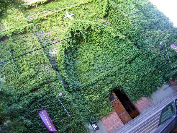 "perierga.gr - Η ""καταπράσινη"" εκκλησία του... Παραδείσου!"